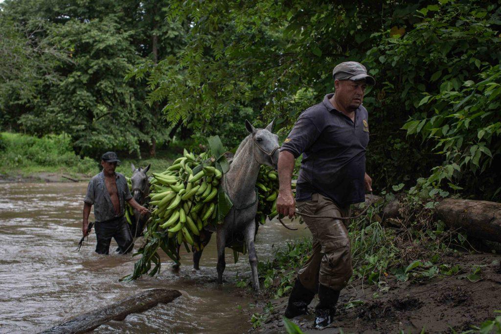 2020 Julio San Vicente Frontera Dibujada Migracion Daris Nicaraguenses La Cruz rural agricultura Cesar Arroyo Castro 10